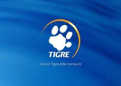 Fusión Tigre Primo – Agencia: La Age