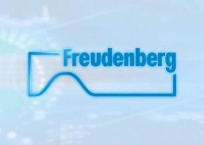 FREUDENBERG – Visitas en Planta